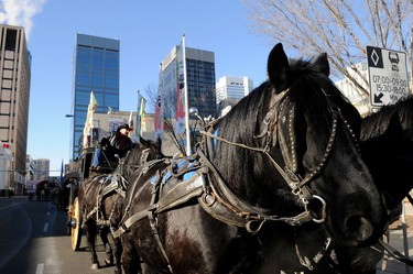 Northlands stagecoach driver Fred Olson drove horses during the River City Round Up caravan, which circled downtown Edmonton during the event's kick off party held at Sir Winston Churchill Square in Edmonton, Alberta, on Nov. 5, 2011. River City Round Up is a ten-day celebration of the capital's agricultural heritage and western history. IAN KUCERAK/EDMONTON SUN/QMI AGENCY