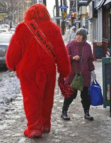 A worthy winner of QMI's photo of the week for Jan. 22: Sensquatch, a local Senators fan, gets some odd looks from a bystander on Elgin St. on Jan. 16. Sensquatch was attending the Sens Mile Charity Chili Cook Off, which raised money for the Centretown community. (Tony Caldwell/Ottawa Sun)