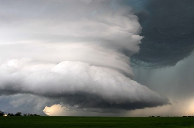 A massive thunderstorm that dropped a tornado near Sundre, Alta., hovers just west of Olds causing strong winds that knocked over numerous trees before heading north towards Red Deer on Thursday July 7, 2011. DARREN MAKOWICHUK/QMI AGENCY