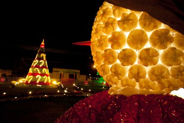 Christmas lights made from recycled PET drinking bottles illuminate the city of Benevides, near Belem at the mouth of the Amazon River. The lights were made as a joint project between the city government and the local union of garbage recyclers.  REUTERS/Paulo Santos