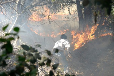 A man works to put out a forest fire near Concepcion city, some 500 km (311 miles) south of Santiago January 3, 2012. REUTERS/Jose Luis Saavedra