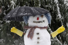 A snowman with an umbrella is covered in ice in a Renton, Washington neighborhood, January 19, 2012.  Ice storms have caused power outages and downed trees throughout the Puget Sound region and have been responsible for at least one death near Issaquah, Washington. REUTERS/Robert Sorbo (UNITED STATES - Tags: ENVIRONMENT TPX IMAGES OF THE DAY)