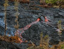 Lava spouts from a hot spot as the lava flow from Mt. Kilauea inches closer to the village of Pahoa, Hawaii