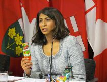 Ontario Associate Health Minister Dipika Damerla announces the province will ban the sale of e-cigarettes to youth and prohibit the product's use wherever smoking is not allowed. Damerla's bill, introduced Monday, Nov. 24 2014, would also ban the sale of