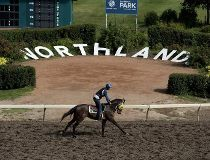 Northlands Park