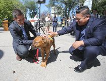 Mayor Brian Bowman was on hand Friday morning to announce Bonnycastle Park on Assiniboine Avenue has been selected as the location for a new downtown off-leash dog park, an item that was on Bowman's campaign to-do list in 2014.