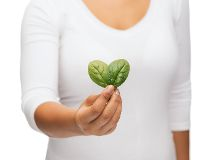 Spinach heart
