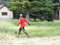 Mountie chases bear