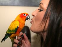 Breanna Markel, and her parrot Bob