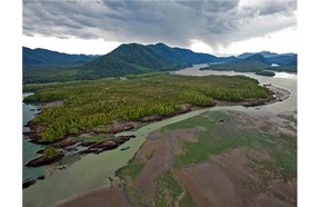 Looking across Flora Bank at low tide to the Pacific Northwest LNG site on Lelu Island, in the Skeena River Estuary near Prince Rupert.