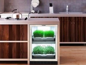 Home-based food production is poised to go mainstream. These units from Urban Cultivator fit under the counter.