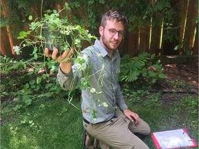 Ken Thompson is the lead author of a study on the adaptation of clover to urban environments.