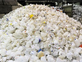 A large pile of plastic milk jugs is sorted inside a recycling depot in New Westminster.