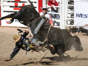 Fabiano Vieira of Perola, Brazil, comes off his mount during bull-riding-finals action at the Calgary Stampede on July 15.