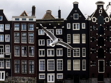 Row of typical Amsterdam houses near the Centraal Station.