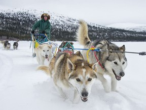 Dog sledding is a popular activity on Fish Lake near Whitehorse.
