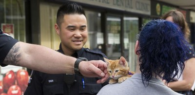 Transit Police Sgt. Clint Hampton (left) reaches out to pet a kitten as he and Const. Darren Chua walk near Surrey Central SkyTrain station.