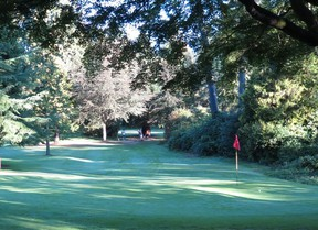 Pitch and putts located in Queen Elizabeth, Rupert and Stanley parks are reopening at 8 a.m. on Tuesday, June 9.