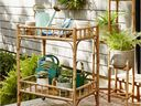 Bar cart from HomeSense used to arrange plants at different height levels, which creates dimension and scale.