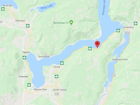 RCMP officers from both Sicamous and Salmon Arm responded to the scene near Bernie Road.