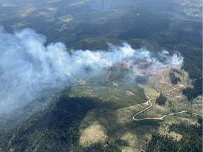 The Dry Lake wildfire north of Princeton, B.C. was reported on Aug. 2, 2020. [PNG Merlin Archive]