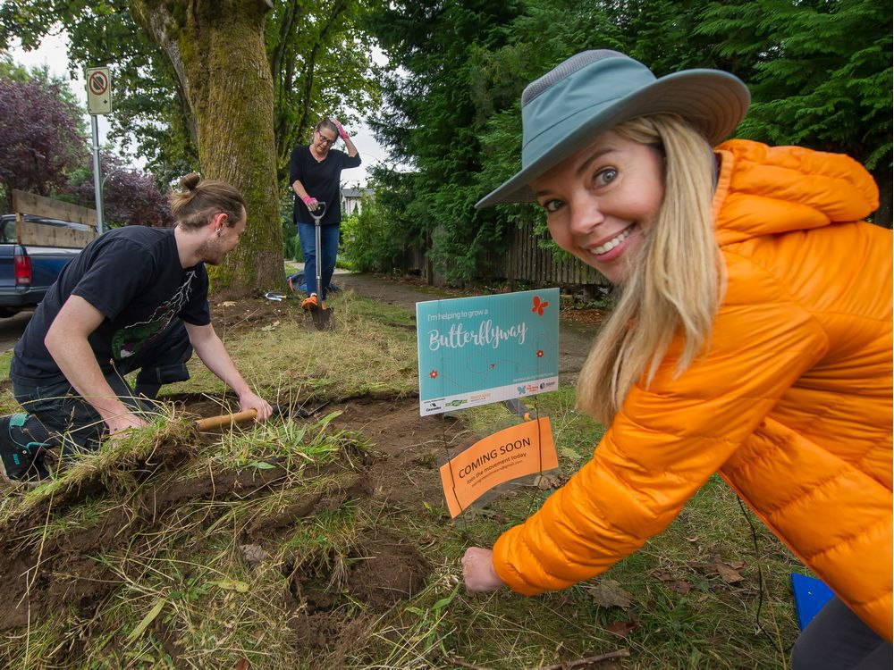 Point Grey neighbours meet-and-greet while helping bees with what they eat