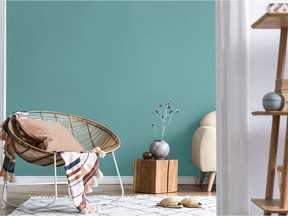 Sico Colour of the Year 2021 Blue-winged Warbler.