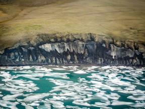 The north coast of Banks Island shows exposed ice along the cliff face. This formation is being eroded by wave action abetted by higher temperatures and decreased sea ice.