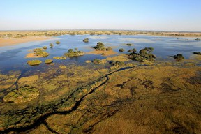Part of the Okavango Delta in Botswana, a world heritage site described by UNESCO as a 'near pristine,' untransformed wetland, is drained into by the Okavango River, which is 50 kilometres from one of ReconAfrica's exploration oil wells.