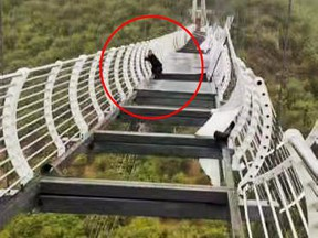 A tourist was trapped 100 metres above the ground on Friday, after winds damaged a glass-bottom bridge in China.