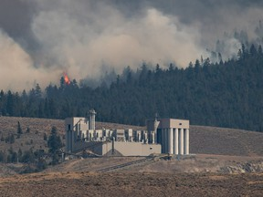 A tree candles as the Tremont Creek wildfire burns behind the IG Machine & Fibers roofing granule plant, where rock is crushed and coloured and then shipped elsewhere to create roofing shingles, in Ashcroft on Friday, July 16, 2021.