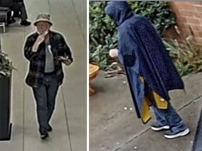 Investigators were able to recently obtain video surveillance and are looking to identify the suspect.