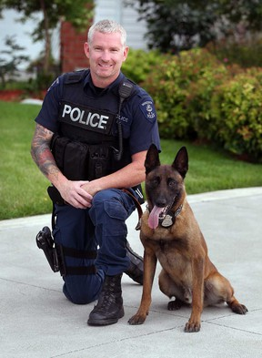 Windsor Police K9 Vegas and Const. Rob Wilson busted a break and enter suspect, Wednesday July 10, 2013. (NICK BRANCACCIO/The Windsor Star)