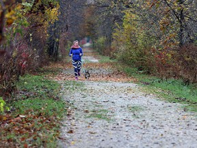 Laura Cordon jogs with her dog Bubs down the new Cypher Systems Group Greenway on Wednesday October 28, 2015.  Cypher Systems Group donated $250,000 for the naming rights to the 25km trail.