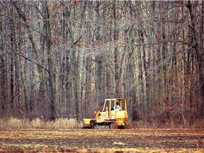 November 11, 1991. A bulldozer clears land on property owned by Emile Walters.  Scott Webster.