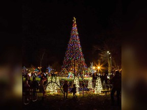A display from the RIver Lights Winter Festival in Amherstburg.
