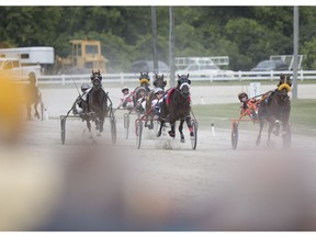 Harness racing returns to Leamington Raceway for first of 13 race days on August 6, 2017.
