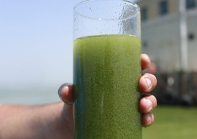 In this Aug. 3, 2014 file photo, a sample glass of Lake Erie water is photographed near the City of Toledo water intake crib on Lake Erie. (File photo)