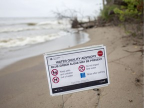 A water quality warning for blue-green algae is posted on a beach at Pt. Pelee National Park on Aug. 16, 2018.