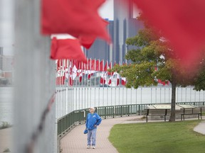 Jack Ottogalli, from Windsor, stops on Sept. 24, 2018, to take in the 131 flags, including 128 Maple Leafs, flying along the riverfront, part of the Flags of Remembrance.