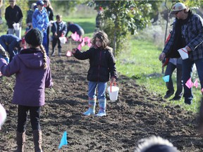 FCA Windsor Assembly Plant's joint workplace environment committee held a planting event on Sunday, October 14, 2018, to create more meadow habitat around the facility. Staff and family members and local Scouts pitched in to plant trees, shrubs and wildflowers. A portion of the volunteers are shown during the event.