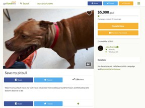 A screen capture of the GoFundMe campaign started by John Scenna of Windsor on behalf of his dog that fatally attacked Joe McParland's greyhound on April 26, 2019.