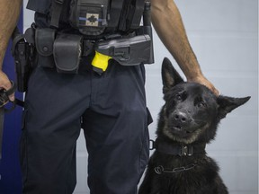 Police service dog, Rolex, pictured with his handler, Const. Marc Tremblay, as Rolex is introduced as the newest service dog to join  the force at the Major F.A. Tilston Armoury and Police Training Centre, Monday, August 19, 2019.