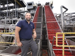 Sam Diab, president and CEO of Highbury Canco in Leamington is shown at the business on Thursday, September 12, 2019. Tomato processing is in full swing.