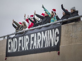Protesters rally against the fur industry on the Central Avenue overpass at E.C. Row Expressway, Thursday, Dec. 26, 2019.