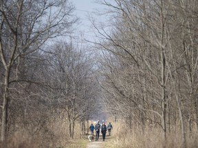 People get outside to enjoy the spring weather at the Ojibway Prairie, Wednesday, March 25, 2020.