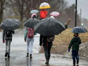 Kids and parents walk to school in pouring rain in Ottawa on Friday.