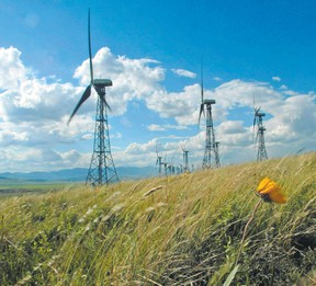 A line of turbines catch the breeze at the Canadian Hydro wind farm on Cowley Ridge east of Crowsnest Pass June 30.