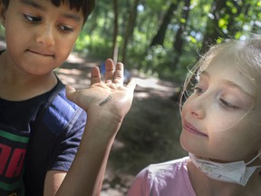 Lena Beneteau, 7, checks out a centipede as it crawls on the arm of Rayn Farooqui, 9, during summer camp at the Natural Pathways Forest and Nature School in Harrow, on Monday, August 2, 2021.