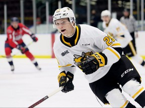 Sarnia Sting's Alex Geci (29) plays against the Windsor Spitfires in an OHL exhibition game at Progressive Auto Sales Arena in Sarnia, Ont., on Friday, Sept. 17, 2021. Mark Malone/Chatham Daily News/Postmedfia Network